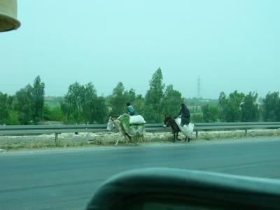 Iraqi women transporting good in 100 degree temp