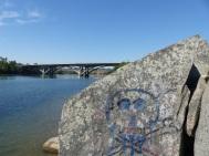 Day 2 at Sacramento River